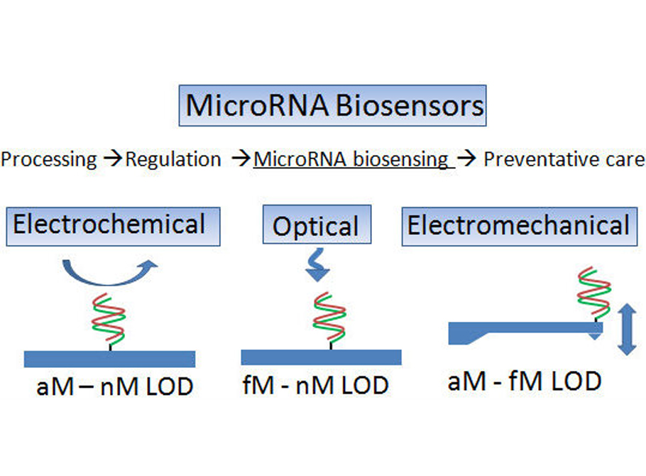 Biosensor-based microRNA detection: techniques, design, performance, and challenges Analyst 139, 1576-1588 (2014)