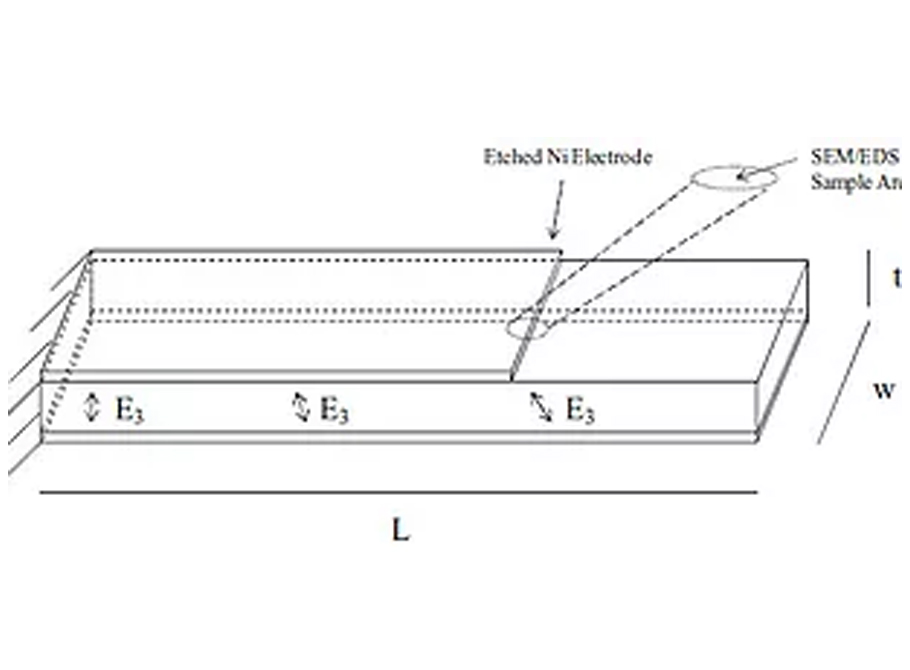 Expression of picogram sensitive bending modes in piezoelectric cantilever sensors with non-uniform electric fields generated by asymmetric electrodes, Review of Scientific Instruments 81, 125108 (2010)