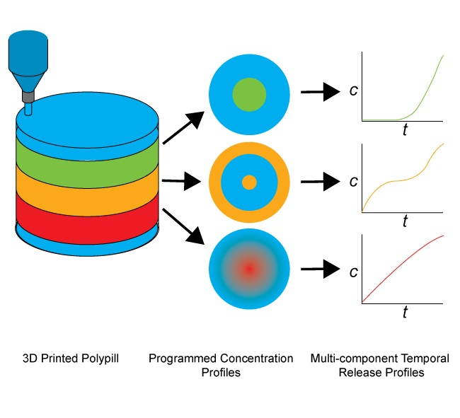 Programming of multicomponent temporal release profiles in 3D printed polypills via core–shell, multilayer, and gradient concentration profiles, Advanced Healthcare Materials DOI: 10.1002/adhm.201800213 (2018)