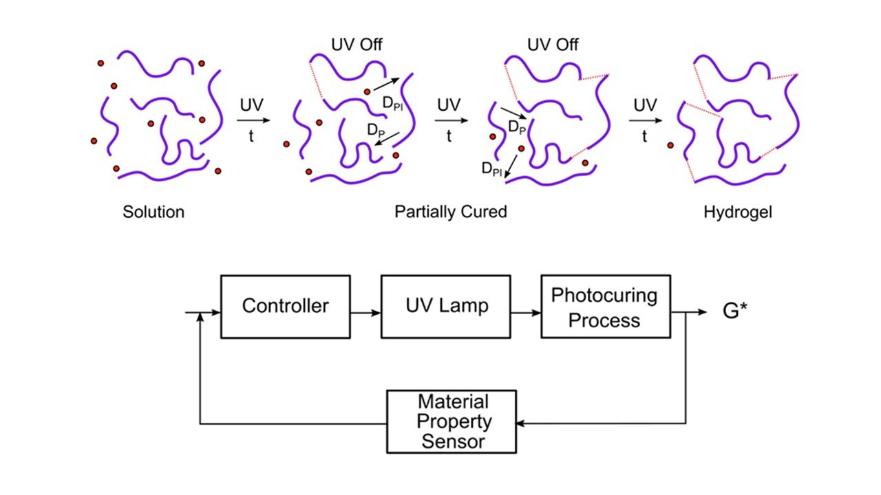 Closed-loop Controlled Photopolymerization of Hydrogels. ACS Applied Materials and Interfaces. Accepted